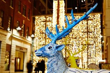 WEB Leeds_Reindeer2014 62